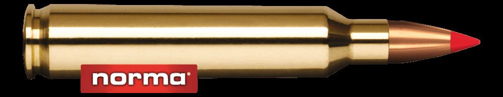 Norma American PH 204 Ruger 40gr V-Max