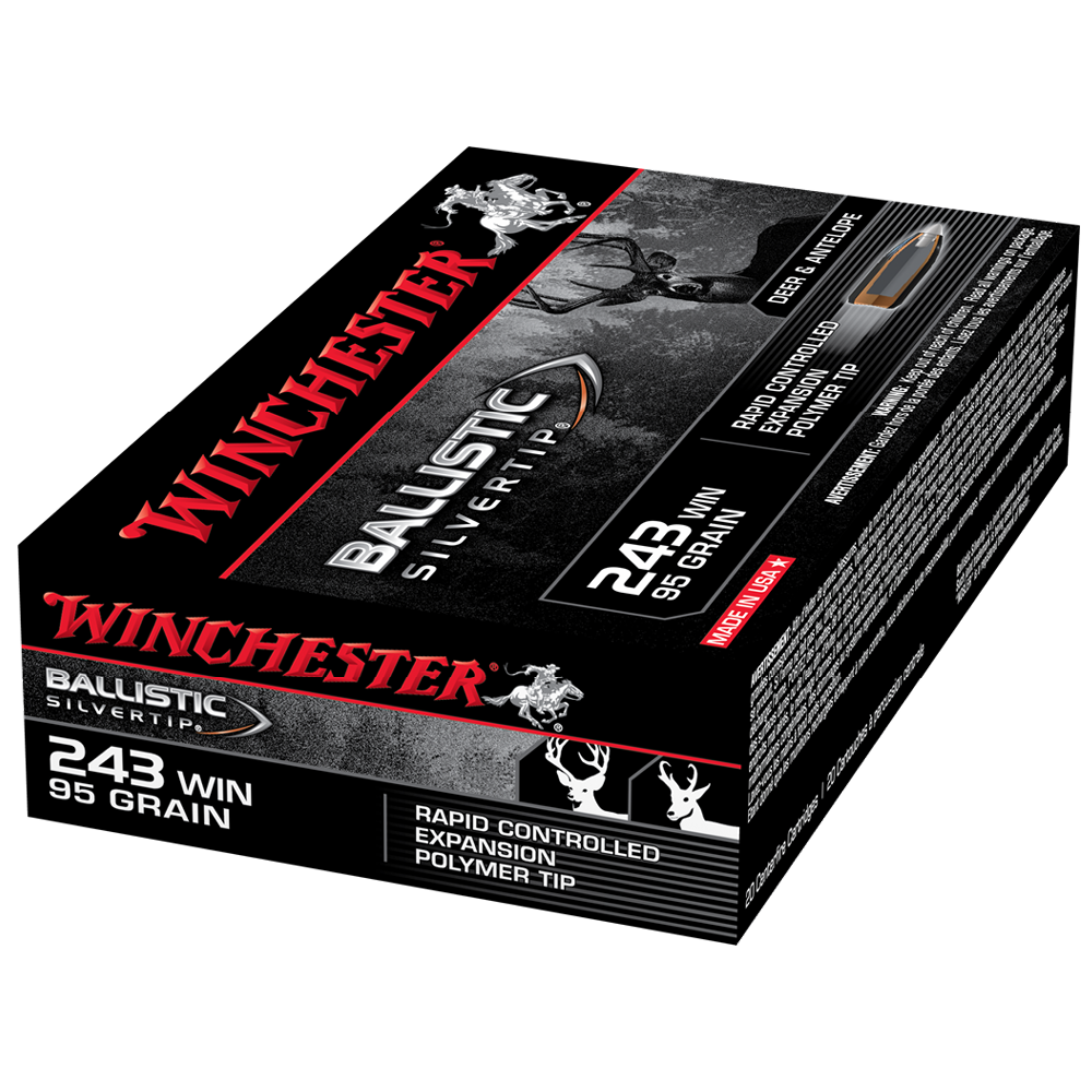 Winchester Ballistic ST 243W 95gr PT