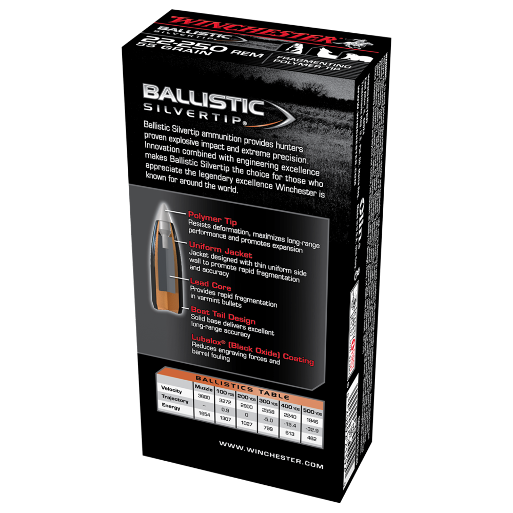 Winchester Ballistic ST 22-250Rem 55gr PT